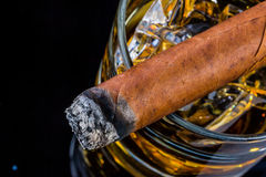 Whisky and cigar Stock Image