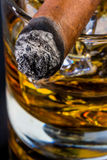 Whisky and cigar Royalty Free Stock Photo