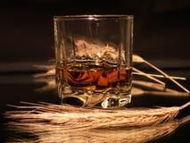 Whisky e frumento Immagini Stock