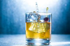 Whisky glass with ice cubes Royalty Free Stock Photos