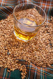 Whisky and grains Royalty Free Stock Image