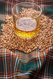 Whisky and grains Stock Image
