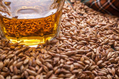 Whisky and grains Royalty Free Stock Photos