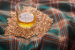 Whisky and grains Stock Images