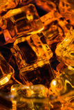 Whisky and Ice Stock Image