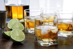 Whisky med ingefärsdricka och limefrukt royaltyfria bilder