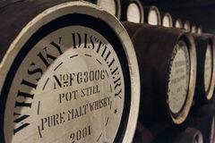 Whisky oak barrels. Row of oak barrels at a whisky distillery Stock Photography