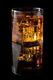 Whisky och is royaltyfri fotografi