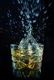 Whisky pluśnięcie od spada kostek lodu Fotografia Royalty Free