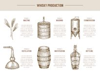Whisky production. Vector hand drawn whisky production elements vector illustration