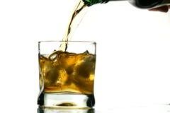 Whisky splash Royalty Free Stock Images