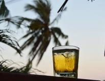 Whisky su ghiaccio Fotografie Stock Libere da Diritti