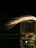 Whisky and wheat Stock Photo
