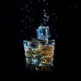 Whisky z lodem spada w szkło solated na czerni Obraz Stock
