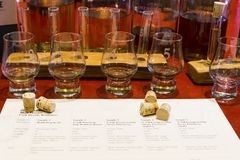 Whiskyavsmakningaktivering med numrerade ta prov exponeringsglas, dryckeskärl och Royaltyfria Bilder