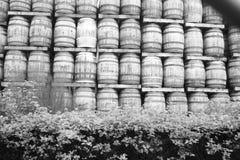 Whiskyfässer Stockbilder