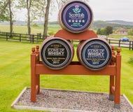Whiskytrummor Royaltyfria Bilder