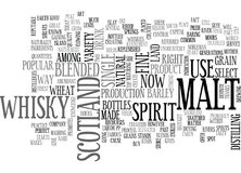 Whisky Word Cloud Royalty Free Stock Photos