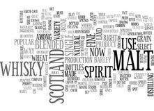 Whiskyword-Wolke Lizenzfreie Stockfotos