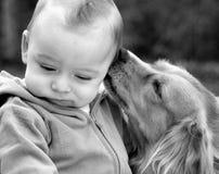 Whisperer del cucciolo Immagine Stock