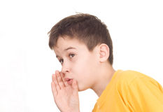 Whispering. Boy with palm at mouth whispers something royalty free stock photos