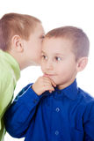 Whispering Secrets Royalty Free Stock Images