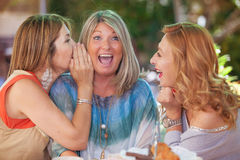 Women gossiping whispering secret scandal. Whispering women friends  gossiping scandal or funny secret Royalty Free Stock Photo