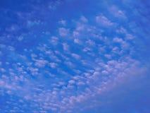 Whispy chmury pierzastej undulatus chmurnieje w ranku fotografia stock