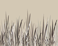 Whispy Grass. Black, grey and white whispy grass background Stock Images