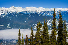 whistler royalty free stock photo