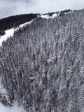 Whistler Canada Fotografie Stock Libere da Diritti
