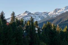 Whistler dans l'automne Image stock