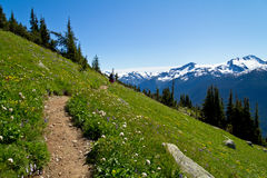 Whistler Hike Stock Image