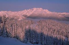 Whistler Mountain site of 2010 Winter Olympics. Near the Whistler Mountain summit, Coast Range of British Columbia Royalty Free Stock Photos