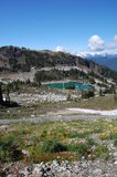 Whistler mountain top in September Royalty Free Stock Photos