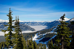 whistler winter royalty free stock image