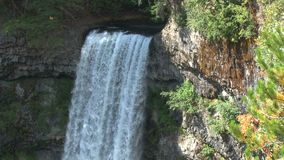 Whistler woods waterfall stock footage