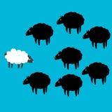 Whit e ovelhas negras na tela azul Foto de Stock Royalty Free