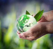 Sustainable development worldwide. Whit man hands - background green nature royalty free stock photo