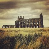 whitby的修道院 库存照片