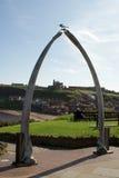 whitby颚骨的鲸鱼 库存图片