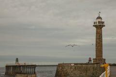 Whitby,约克夏-江边-人们和海鸥 库存照片