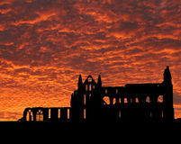 whitby abbey Royaltyfri Foto