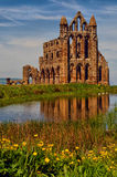 whitby abbey Royaltyfria Bilder