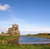 whitby abbey Royaltyfria Bilder