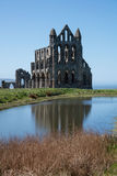 whitby abbey Arkivbilder