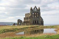 whitby abbey royaltyfri bild