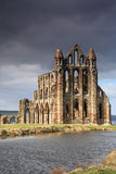 Whitby Abbey lit by the sun Royalty Free Stock Photos