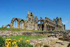 Whitby Abbey North Yorkshire Royaltyfri Fotografi