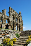 Whitby Abbey, North Yorkshire Stockbild